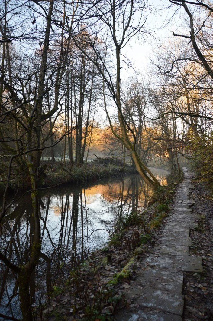 Jumbles Country Park, November 2016 © Luchia Houghton