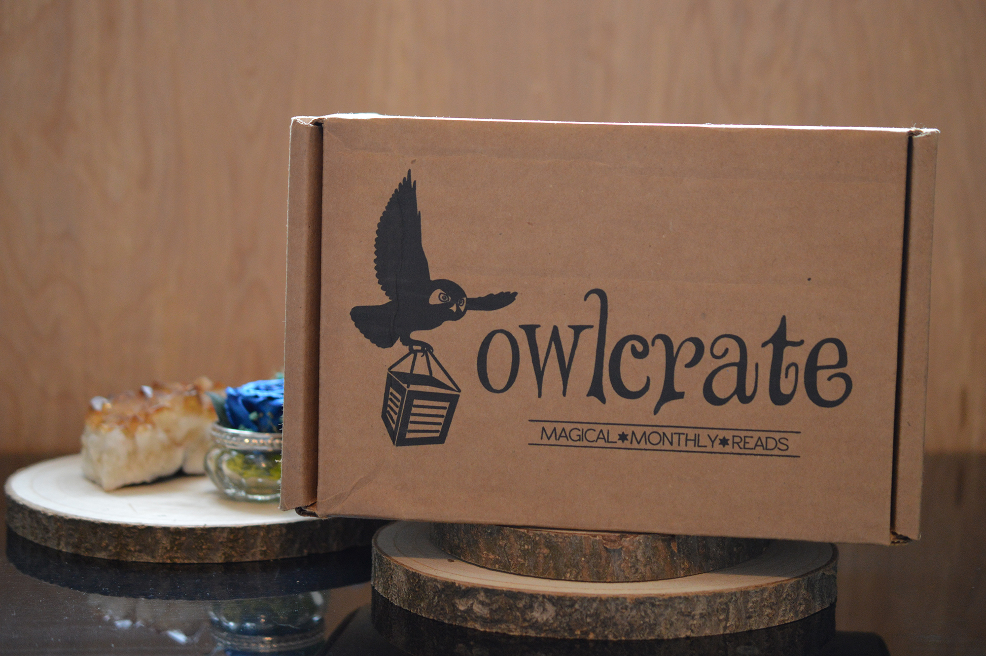 OwlCrate Unboxing November 2017